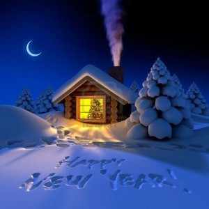happy new year cabin