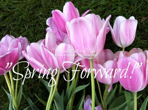 spring forward tulips
