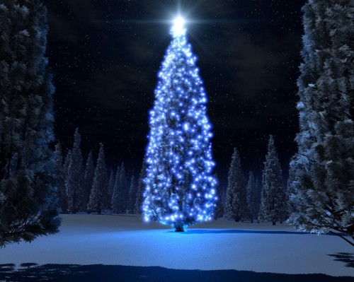 christmas-blue-tree-wallpaper-source_amr