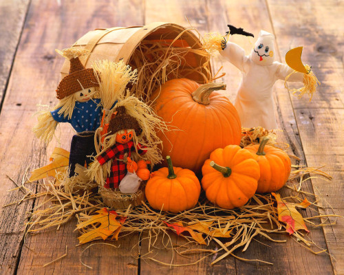 fall decorationa