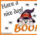 have  anice day Boo